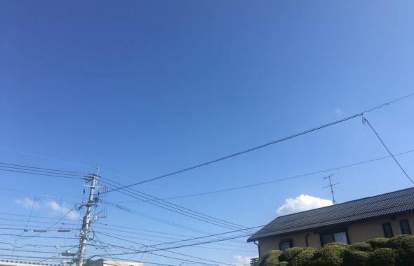 今日は晴天でした